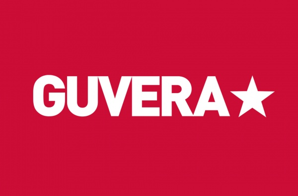 IP Due Diligence for GUVERA